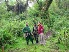 Becky with our guide, Patience, and gorilla tracker, Castro; Volcanoes National Park