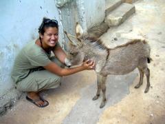 Becky befriends a baby donkey; Shela