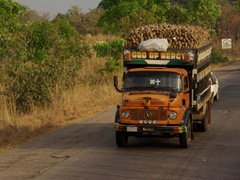 "A ""God of Mercy"" truckload of cassava"