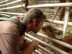 Robby gets a gentle kiss from a bush buck; Drill Monkey Sanctuary in Calabar
