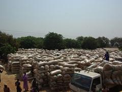 Stuffed sacks of grain stacked high; Ogbomosho