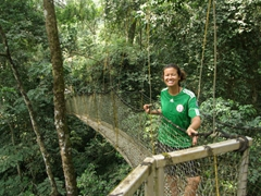 Becky loved the canopy walk at the Afi Mountain Drill Ranch