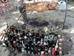 View of our ever growing collection of alcohol bottles (the goal was to get 200 bottles in commemoration of Day 200)