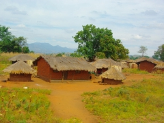 Our first view of a traditional Malawian village (having just entered from Mozambique)
