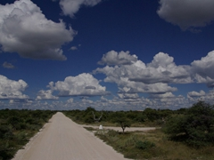 Fluffy clouds dominate the skyline over Etosha Park