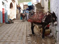 Donkey transport, Chefchouan's medina