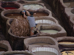 Working the dye pits of the leather tanneries of Fes is backbreaking and relentless