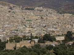 View of Fes as seen from the Merenid Tombs