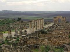 Cardo Maximus; Volubilis