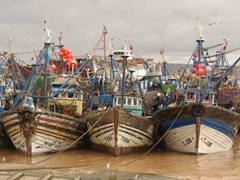 Colorful fishing boats line the harbor in Essaouira