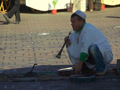 Snake charmer in Marrakesh's Djamaa El Fna square