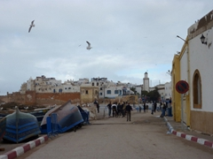 Essaouira was an unexpected surprise, a laid back sea side resort with a nice vibe