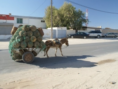 A donkey cart without a driver carries a heavy load through Nouadhibou