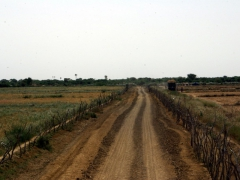 The road leading to the Diama dam road bridge, one of the border crossings into Senegal from Mauritania