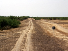60 KM per hour speed limit sign on dirt road towards Senegal