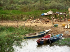 Fish drying out in the heat with colorful fishing boats nearby; Diawling National Park