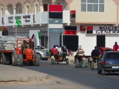 Once the roller skater catches up with some slow moving donkey carts, he hitches a ride; Nouadhibou