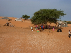 Mauritanian children wave a happy greeting as our truck zooms by