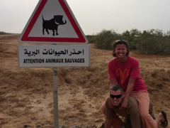 Beware savage animals; signpost in Diawling National Park