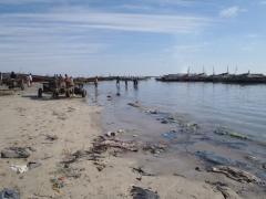 Main fishing port in Nouadhibou