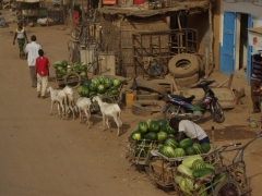 Watermelon vendors, a common sight in the markets of Mali