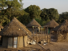 We passed by hundreds of traditional villages such as this one as we drove through the Malian countryside