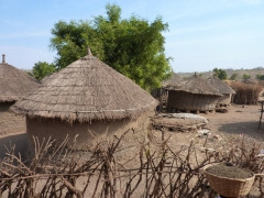 Traditional thatch roofed, mud dwellings are seen all over the Mali countryside