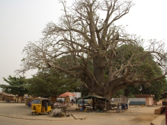 Center of Ouidah (in front of the python temple)