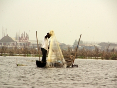 A fisherman steadies himself to throw his fishing net while balancing on his pirogue; Ganvie