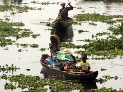 Ganvie residents navigating their way around their lakeside home