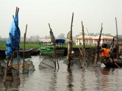 A lady setting fishing traps at Ganvie Lake Village