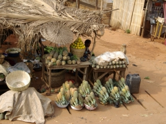 Pineapples were our fruit of choice in Benin