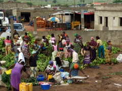 Fresh produce market outside Luanda