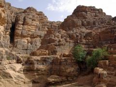Tikobawhen landscape