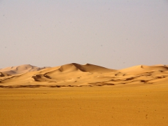 The quintessential image of sand dunes for miles on end; Algerian Sahara