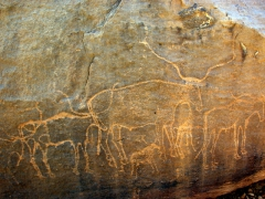 Engravings of cows; Tintilaman