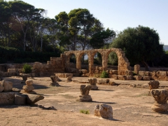 The Great Christian Basilica; Tipaza