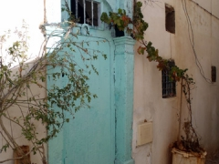 Plants growing around the doorway to a home in the Casbah; Algiers