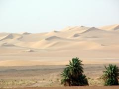 Beautiful sand dunes; near Timimoun