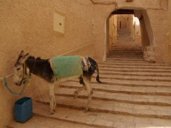 Typical stairs seen through the village of Ghardaia