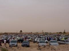 Hundreds of eager hopefuls look for a bargain at a car bazaar; near El Golea