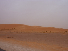 Our first glimpse of sand dunes in the Sahara, drive from M'zab Valley towards El Golea