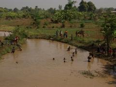 Village kids seeking refuge from the heat in a muddy river