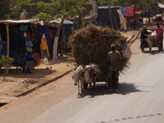 A massive cartful of hay being transported on the streets of Bobo-Dioulasso