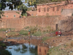 The sacred fish pond of the old village of Kibidoue also serves as a source of water for laundry