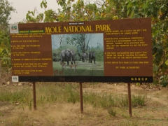 Mole National Park entrance sign (note: closed toe shoes are mandatory for the safari walk)