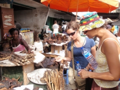 Becky and Katherine check out dried bat carcasses and grass eaters; Makola market