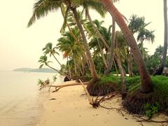 Tavewa island beach erosion