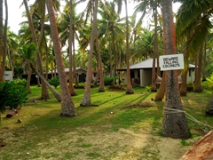 """Beware Falling Coconuts"" - a real danger on Tavewa Island where coconut trees are everywhere!"