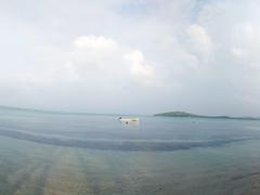 Beach panorama; Tavewa Island